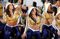 6 February 2010:  FIU's Golden Dazzlers entertain the crowd during a time-out in the first half as the FIU Golden Panthers defeated the North Texas Mean Green, 72-55, at the U.S. Century Bank Arena in Miami, Florida.