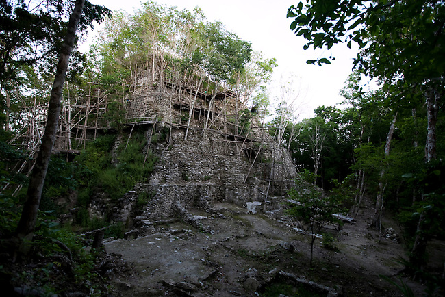 The top of the El Mirador temple in the center of the Mayan Biosphere. The massive temple may be the largest in the world and can only be reached by hiking two days through the jungle.