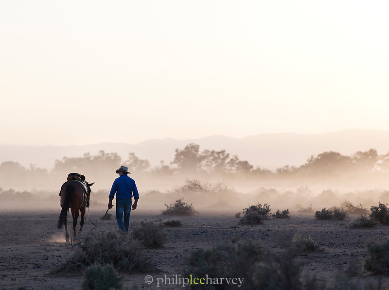 Ranch owner leading his horse at sunrise. Flinders Ranges, South Australia, Australia