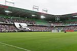 FC - FC TWENTE 2015-2016