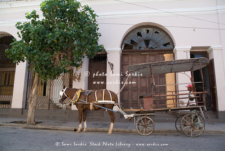 A taxi driver waiting patiently for passengers with his horse and cart on the streets of Cienfuegos, Cuba.