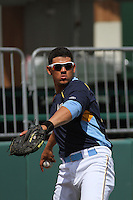 Myrtle Beach Pelicans catcher Jorge Alfaro #24 throwing  in the outfield during a team workout at Ticketreturn.com Field at Pelicans Ballpark on April 1, 2014 in Myrtle Beach, South Carolina. (Robert Gurganus/Four Seam Images)