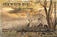 2013 Nature's Inspirations Calendar