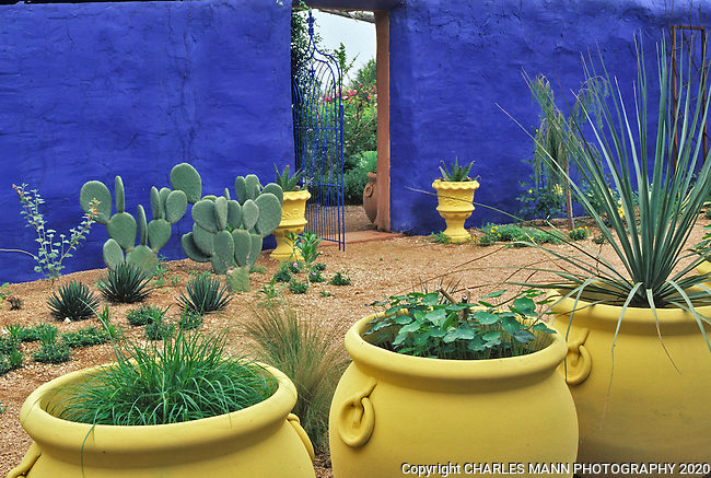 Large Pots Painted Pale Yellow And Blue Walls Are Part Of The Color Scheme  In The
