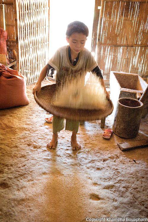 A Lanten boy separate rice at Ban Nam Goy in Luang Namtha, Laos on November 11, 2009.   (Photo by Khampha Bouaphanh)