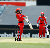 2nd November 2019; Western Australia Cricket Association Ground, Perth, Western Australia, Australia; Womens Big Bash League Cricket, Melbourne Renegades versus Sydney Sixers; Tammy Beaumont of the Melbourne Renegades fends off a short rising ball - Editorial Use