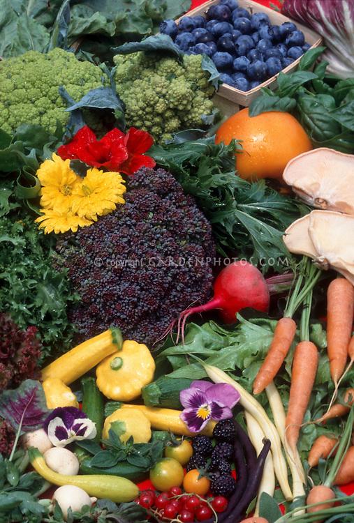 Garden Bounty: beans, endive, squash, Calendula, nasturtium, broccoflower, carrot, endive, basil, squash, radish, lettuce, pansy