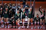 November 22, 2019; Rapid City, SD, USA; Northwestern bench reacts to a point vs. Faulkton Area at the 2019 South Dakota State Volleyball Championships at the Rushmore Plaza Civic Center in Rapid City, S.D. (Richard Carlson/Inertia)
