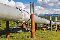Trans Alaska oil pipeline traverses the tundra in the Alaska Range, south of delta junction.