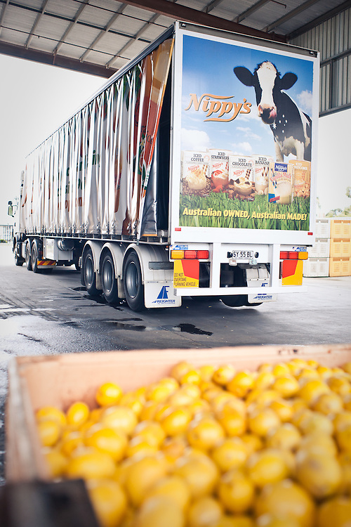 NIppys fruit Juice.The production of fruit juices.