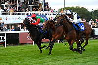 Winner of The British Stallion Studs EBF 'Ladies' Evening' Fillies' Handicap,  Standing rock (white\blue) ridden by Kieran Shoemark and trained by John Gosden  during Ladies Evening Racing at Salisbury Racecourse on 15th July 2017