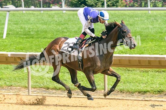 Racetrack Romance winning at Delaware Park on 8/14617