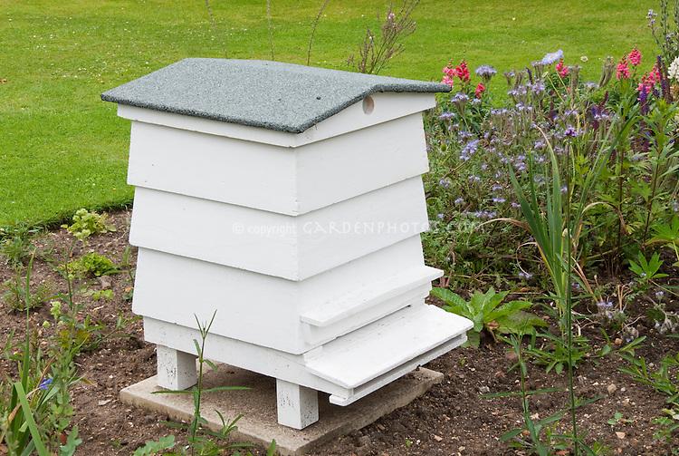 Beehive in garden near flowers, Warre bee hive style