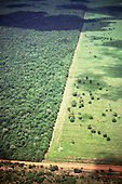 Amazon, Brazil. Aerial view of straight roads separating newly deforested areas and remaining rain forest in a rainstorm.