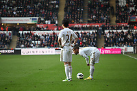 Pictured: Swansea's Ki Sung Yeung and team mate Wayne Routledge<br />