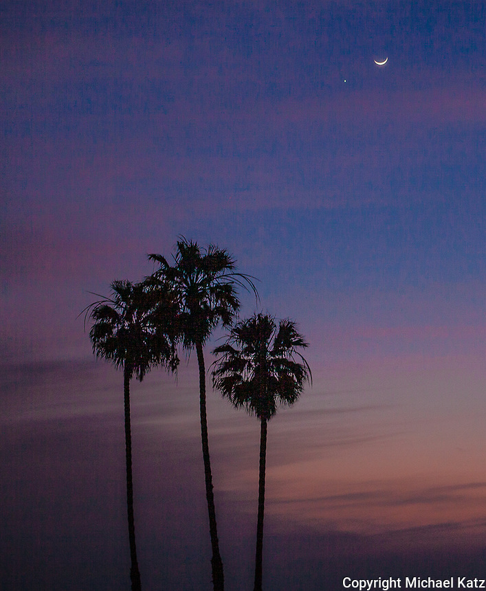 Moon, Venus and Palms, Santa Monica Beach