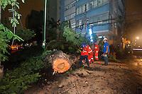 SAO PAULO, SP, 23.11.2015 - QUEDA-ÁRVORE - Queda de árvore na Alameda Casa Branca esquina com rua Oscar Freire, interrompendo totalmente a via e com corte do fornecimento de luz no local nesta segunda-feira 23. ( Foto: Gabriel Soares/ Brazil Photo Press)
