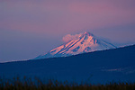 Distant Mount Shasta volcano at sunrise, Cascade Range, Siskiyou County, California
