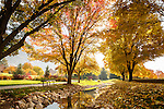 1310-80 404<br /> <br /> 1310-80 GCS Fall<br /> <br /> General Campus Scenics: Bell tower stream, water feature, fall, autumn, leaves, reflection, bench<br /> <br /> October 25, 2013<br /> <br /> Photo by Jaren Wilkey/BYU<br /> <br /> &copy; BYU PHOTO 2013<br /> All Rights Reserved<br /> photo@byu.edu  (801)422-7322