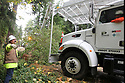 Nov 2, 2013:  Potelco employee Ed Fletcher guides lineman Chad Lohrey into position to pull a tree of f the road. Potelco crew members worked to repair a #4 Copper wire that was knocked down when a tree was blown down along Tracyton NW Blvd and Stampede NW Blvd.