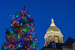 MC 12.26.16 Christmas Tree and Dome.JPG by Matt Cashore/University of Notre Dame