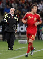 Spain's coach Vicente del Bosque during 15th UEFA European Championship Qualifying Round match. November 15,2014.(ALTERPHOTOS/Acero) /NortePhoto nortephoto@gmail.com