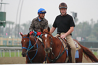Renee's Queen coming off the track for trainer Eric Guillot at Santa Anita Park in Arcadia California