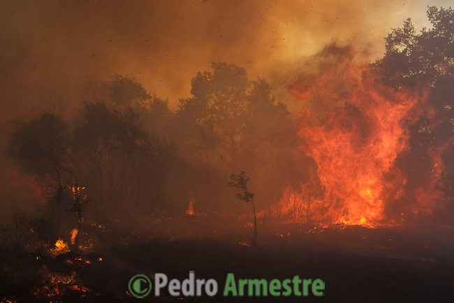 General view of a wildfire in Mandín Cualedro, Ourense on August 24, 2013. (c) Pedro ARMESTRE.