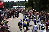 bunch sprint finish rollout<br /> <br /> Stage 4: La Baule &gt; Sarzeau (192km)<br /> <br /> 105th Tour de France 2018<br /> &copy;kramon