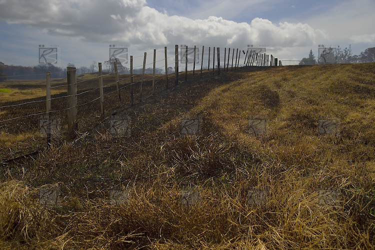 Fire damage to farmland near Motutangi swamp at Houhora.