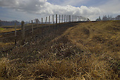 Fire damage to farmland near Motutangi swamp at Houhora.