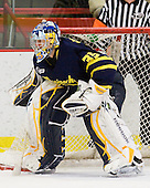 Joe Cannata (Merrimack - 35) -  - The visiting Merrimack College Warriors defeated the Harvard University Crimson 3-1 (EN) at Bright Hockey Center on Tuesday, November 30, 2010.
