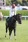 Ares Barows (Yuji Hishida), AUGUST 19, 2018 - Horse Racing : Ares Barows ridden by Yuji Hishida after winning the TV Nishinippon Corp.Sho Kitakyushu Kinen at Kokura Racecourse in Fukuoka, Japan. (Photo by Eiichi Yamane/AFLO)