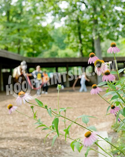 Hot Trippi at Delaware Park on 7/5/12