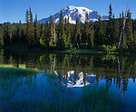 Mt. Rainier National Park, WA     <br /> Morning light on Mt. Rainier with reflection on a grassy shore of Reflection Lake