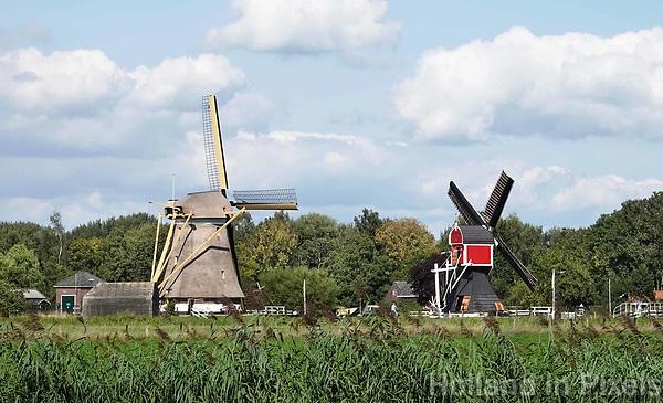 Nederland Oud-Zuilen - Augustus 2018.  Twee molens in de polder. Rechts de Buitenwegse Molen, een wipmolen.  Foto Berlinda van Dam / Hollandse Hoogte