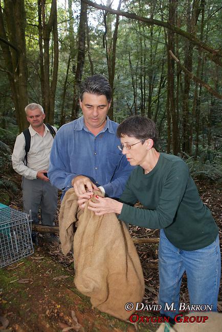 David & Jean Transfering Possum From Trap