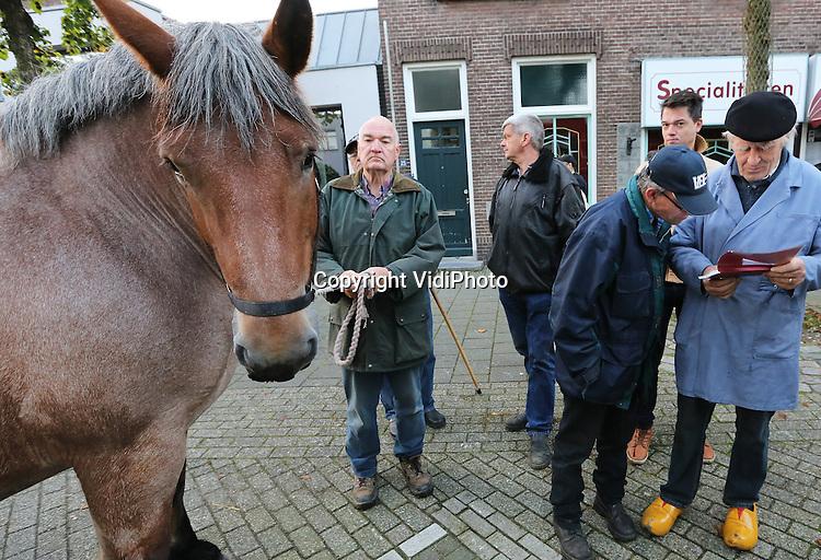 Foto: VidiPhoto<br /> <br /> ELST - Voor het eerst weer een lichtpuntje in paardenland maandag. Voor goedkope Nederlandse paarden is veel belangstelling vanuit Duitsland, Belgi&euml; en Frankrijk. Dat bleek tijdens de 754e  paardenmarkt in het Gelderlandse Elst, de oudste paardenmarkt van ons land en samen met Hedel en Zuid-Laren behorend tot de grootste drie. Elst opent traditiegetrouw van dit trio de najaarsmarkten voor gebruikspaarden. Voor het derde opeenvolgende jaar werden er in Elst opnieuw minder dieren (1375) aangeboden. Met name waren er fors minder pony's. Voor paarden is een stijgende belangstelling vanuit het buitenland. Marktmeester Frits Hoogveld verwacht dat er daarom de komende jaar weer meer paarden gefokt zullen worden. Als enige Nederlandse paardenmarkt is Elst sinds kort geplaatst op de Nationale Inventaris Immaterieel Cultureel Erfgoed.