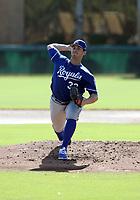 Zach Lovvorn - 2017 AIL Royals (Bill Mitchell)