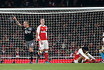 Southampton's Jordy Clasie celebrates scoring his sides opening goal during during the EFL Cup match at the Emirates Stadium, London. Picture date October 30th, 2016 Pic David Klein/Sportimage
