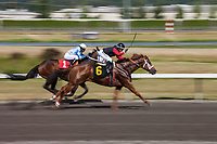 Thoroughbred Horse Racing, Emerald Downs, Auburn, Washington, USA.