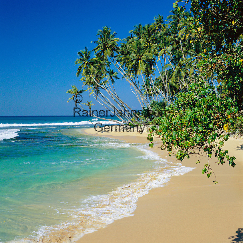 Sri Lanka, West coast near Unawatuna: secluded beach | Sri Lanka, Westkueste bei Unawatuna: einsamer Strand