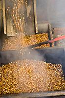 Europe/Espagne/Iles Canaries/Tenerife/ La Orotava: Moulin à  Gofio ,Farine grillée puis moulue de Maïs