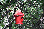 BIRD HOUSES IN MANITOBA