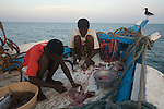 preparing fish on the boat Niya (espoir)