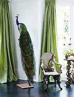 One of a pair of peacocks that flanks the window in the dining room, its exoticism matched only by the pair of Venetian grotto chairs beside it