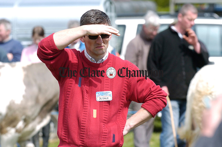 Judge Clive Jennings keeping an eye on the stock at Newmarket on Fergus Show. Photograph by John Kelly.