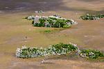 Aerial of sawgrass marsh and hardwood hammocks, Everglades National Park, Florida, USA