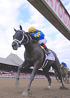 Shanghai Bobby (no. 2A), ridden by Rosie Napravnik and trained by Todd Pletcher, wins the grade 2 Hopeful Stakes for three year olds on September 3, 2012 at Saratoga Race Track in Saratoga Springs, New York.  (Bob Mayberger/Eclipse Sportswire)