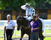 Winner of The New Forest Farm Machinery/John Deere Auction Stakes Oberyn Martell ridden by Charles Bishop and trained by Eve Johnson Houghton is led into the winners enclosure during Whitsbury Manor Stud Bibury Cup Day Racing at Salisbury Racecourse on 27th June 2018